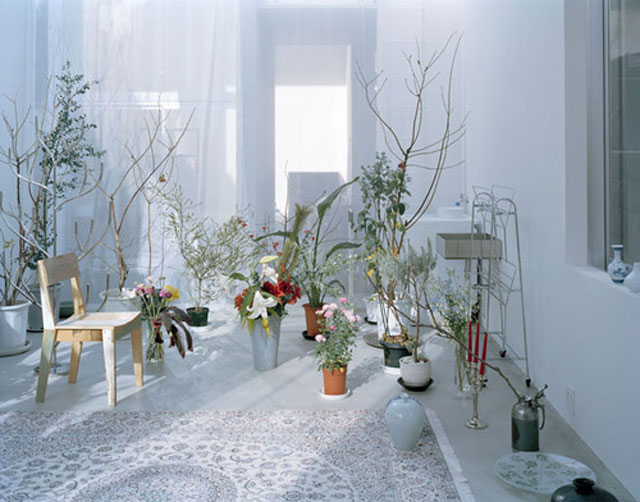 Could This Be A Perfect Indoor Outdoor Space Yellowtrace