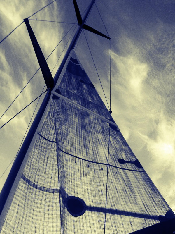 sydney-sailing_yellowtrace