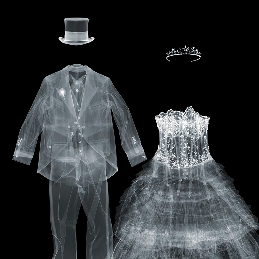 X-Ray Photography by Nick Veasey | Yellowtrace.