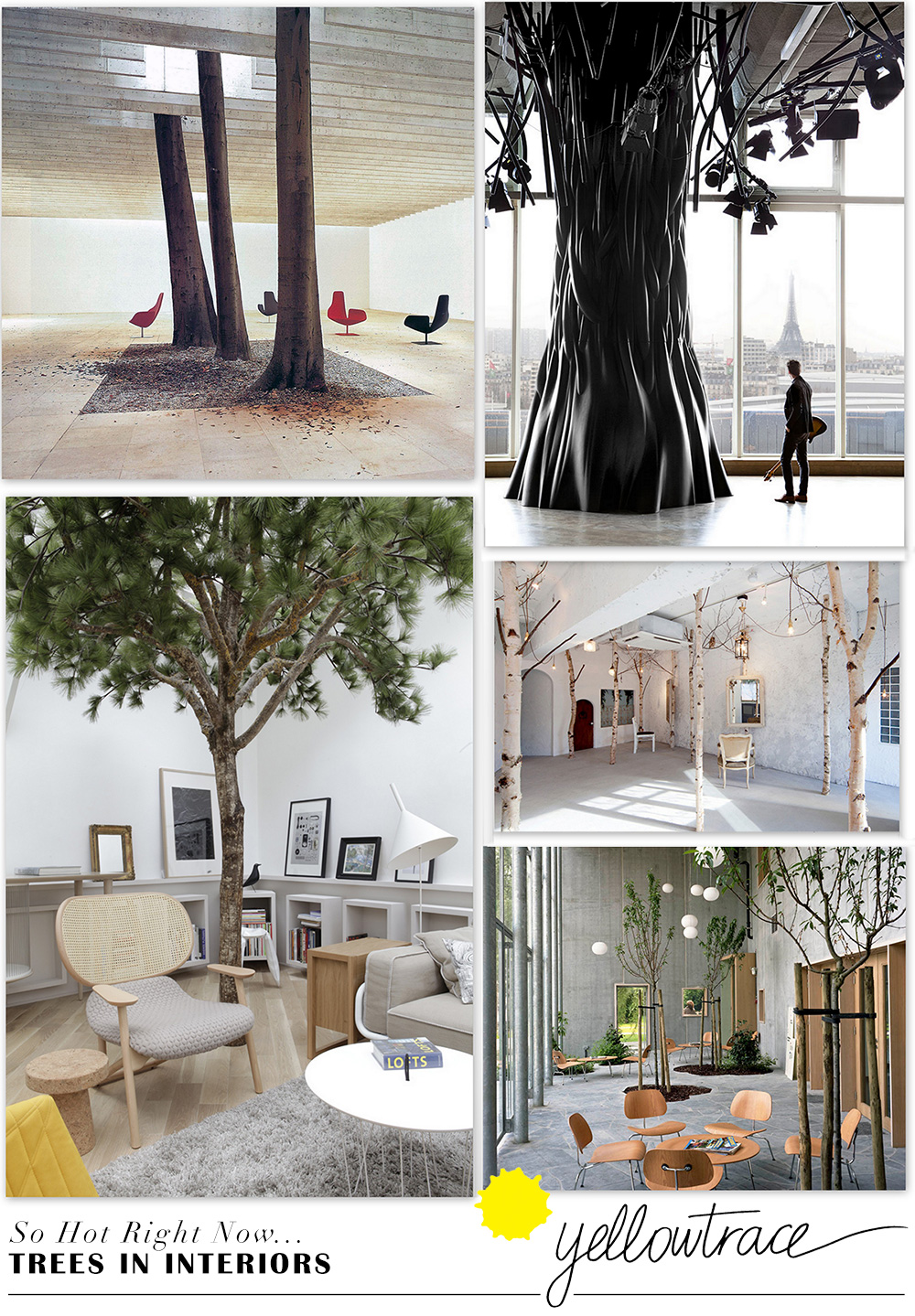 Trees in Interior Design | Curated by Yellowtrace.
