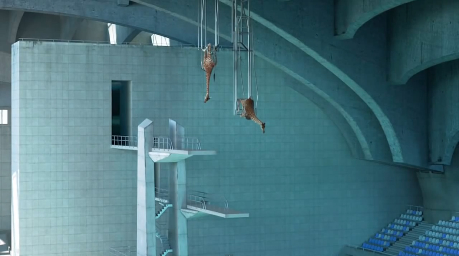 5m80: High Diving Giraffes by Cube Creative | Yellowtrace.