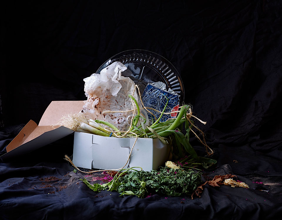 Laurie Frankel: Recycled Beauty, Onion Box | Yellowtrace