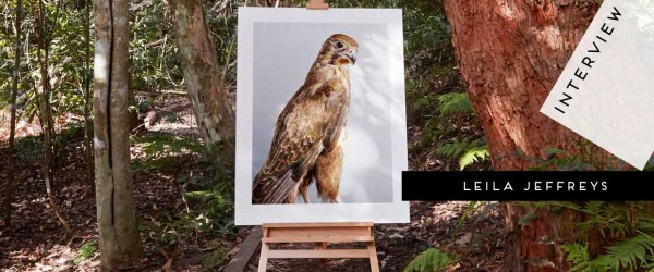 'Darcy' Brown Falcon in situ by Leila Jeffreys | Yellowtrace