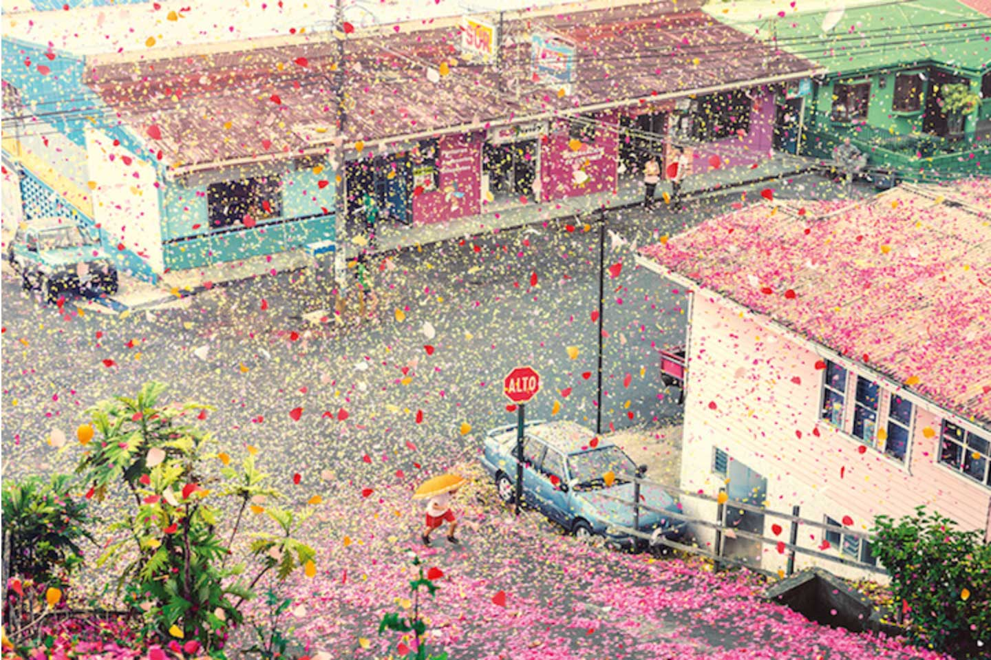 8 Million Flower Petals Over Costa Rica by Nick Meek for Sony | Yellowtrace