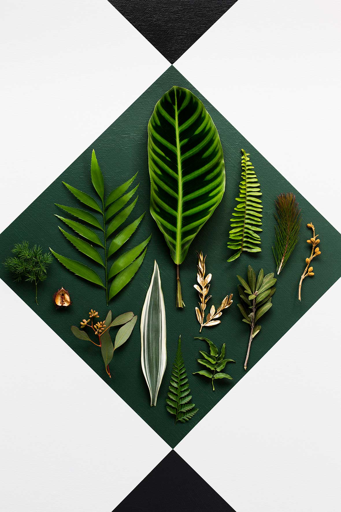2015 Colour Expressions Forecast by Haymes | Yellowtrace
