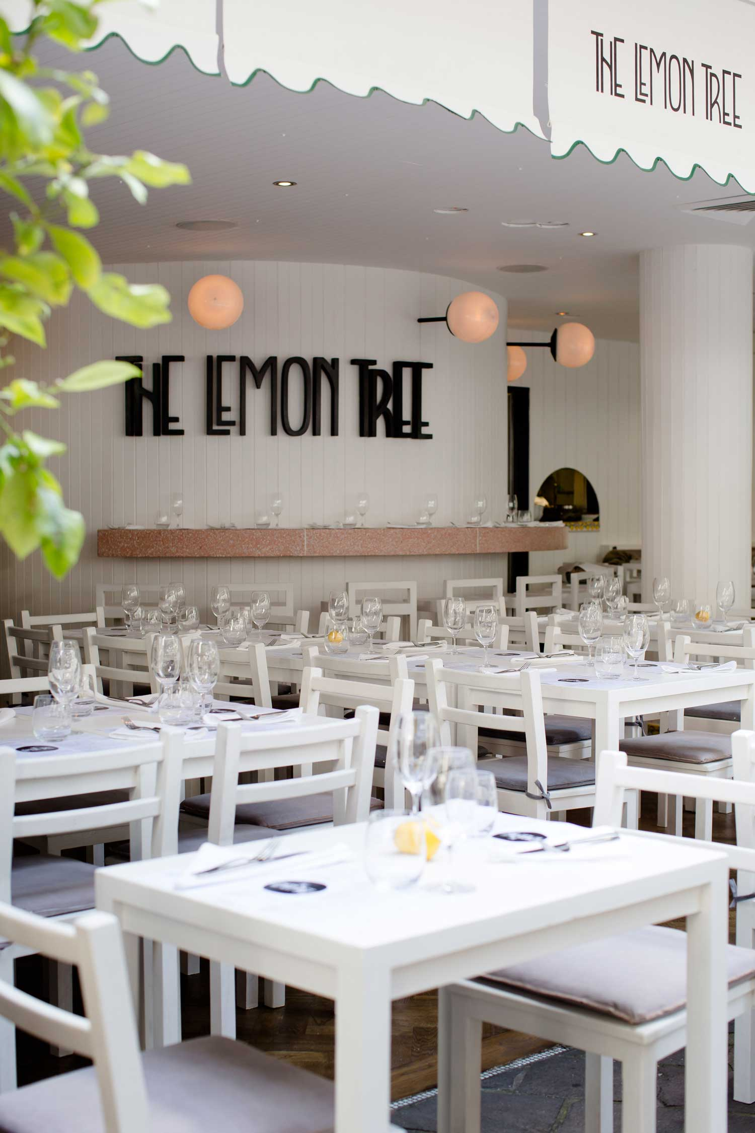 The Lemon Tree bar/restaurant in Sydney CBD | Yellowtrace