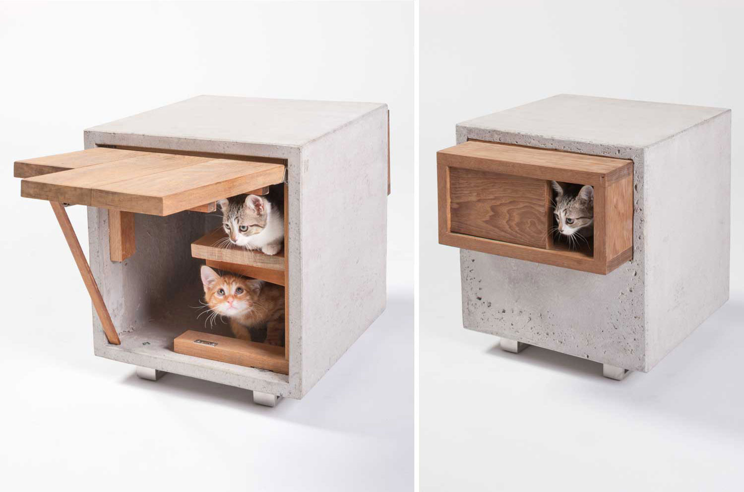 Animal Shelters by Standard architecture Design | Yellowtrace