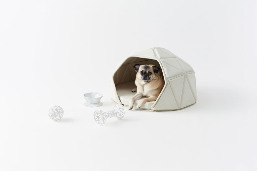 Dog Accessories by Nendo | Yellowtrace