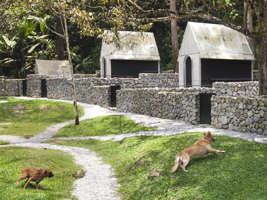 Dogs Hotel by WHBC Architects | Yellowtrace
