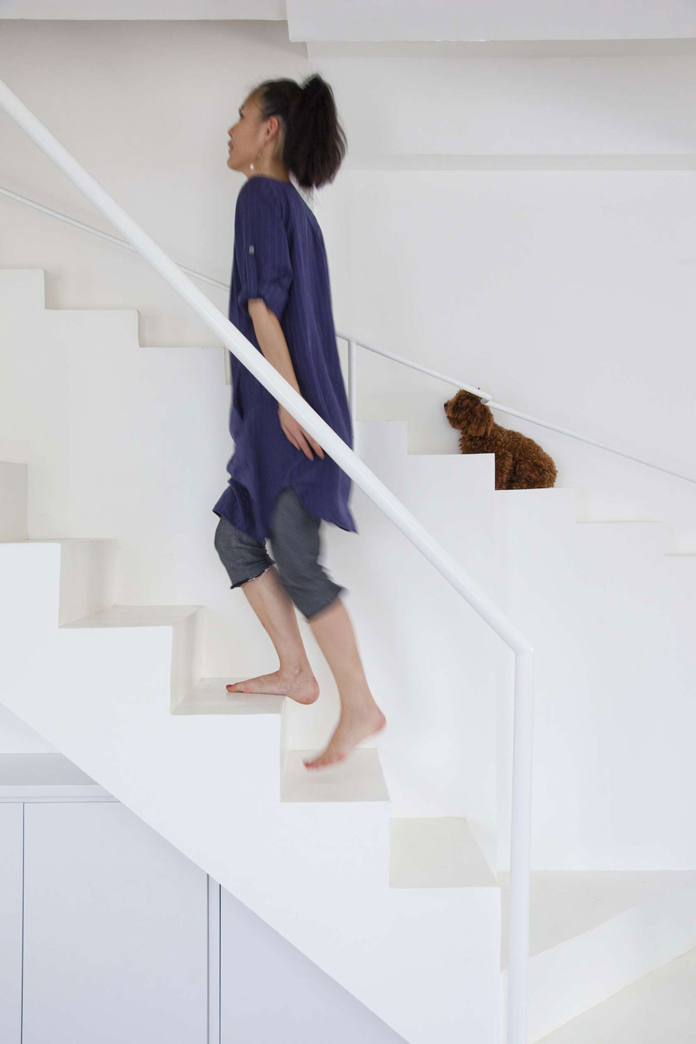 House Renovation with stairs for dogs in Vietnam by 07Beach | Yellowtrace