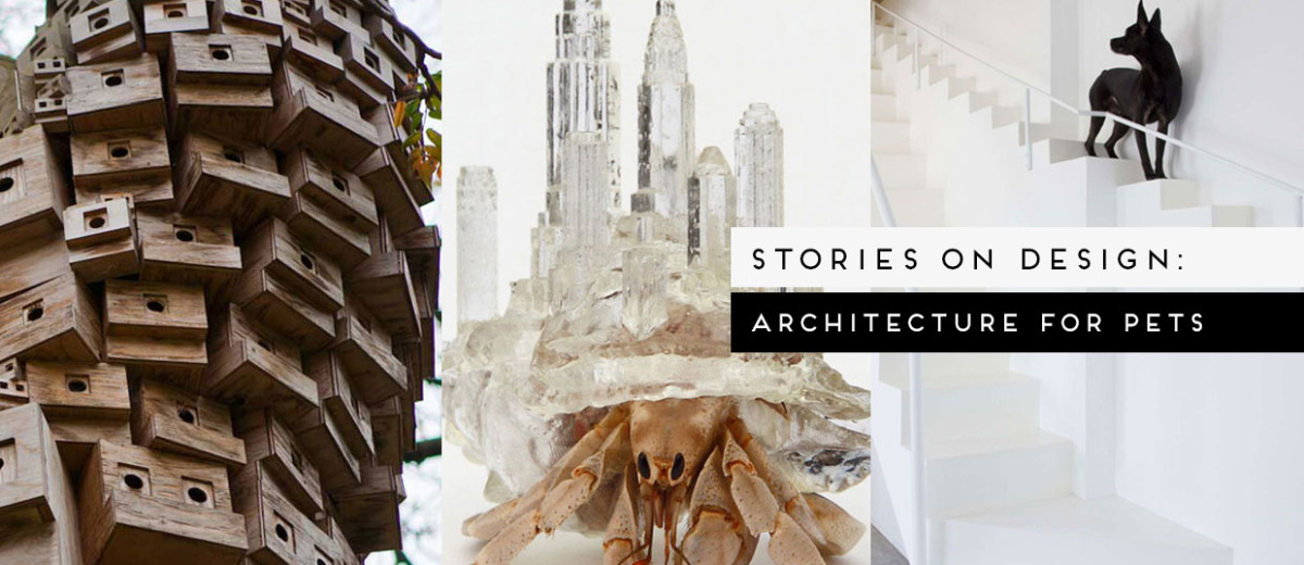 Architecture for Pets Curated by Yellowtrace