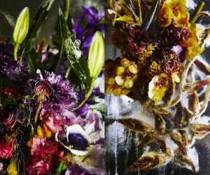 Flower Bouquets Frozen in Blocks of Ice by Makoto Azuma | Yellowtrace