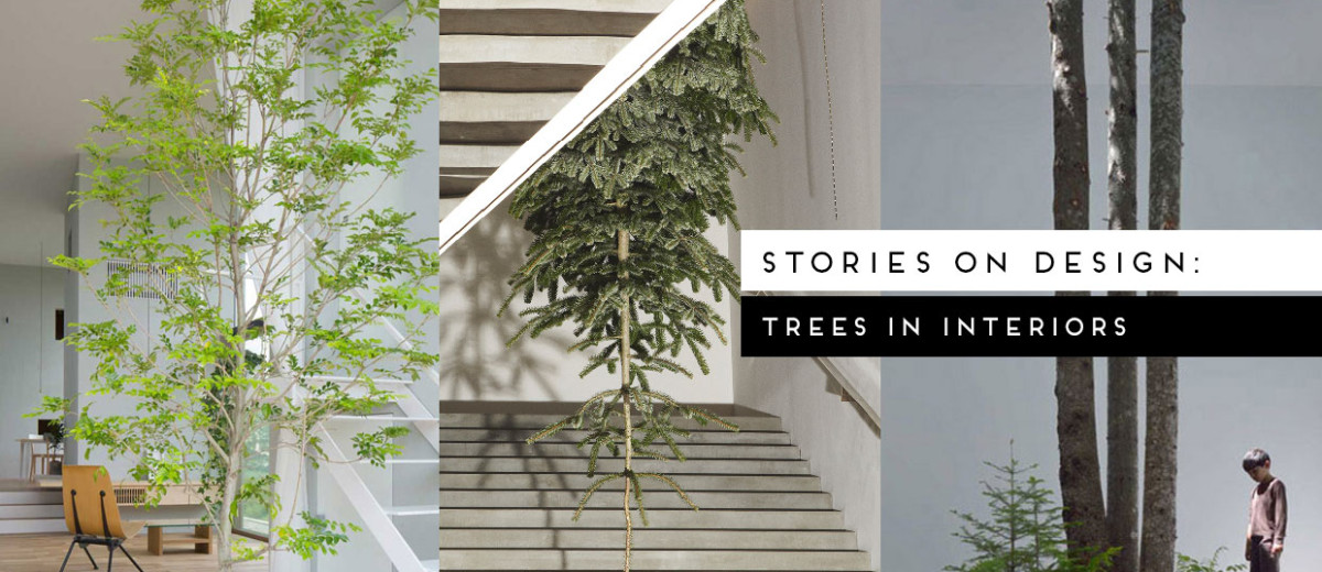 Trees in Interiors, Curated by Yellowtrace
