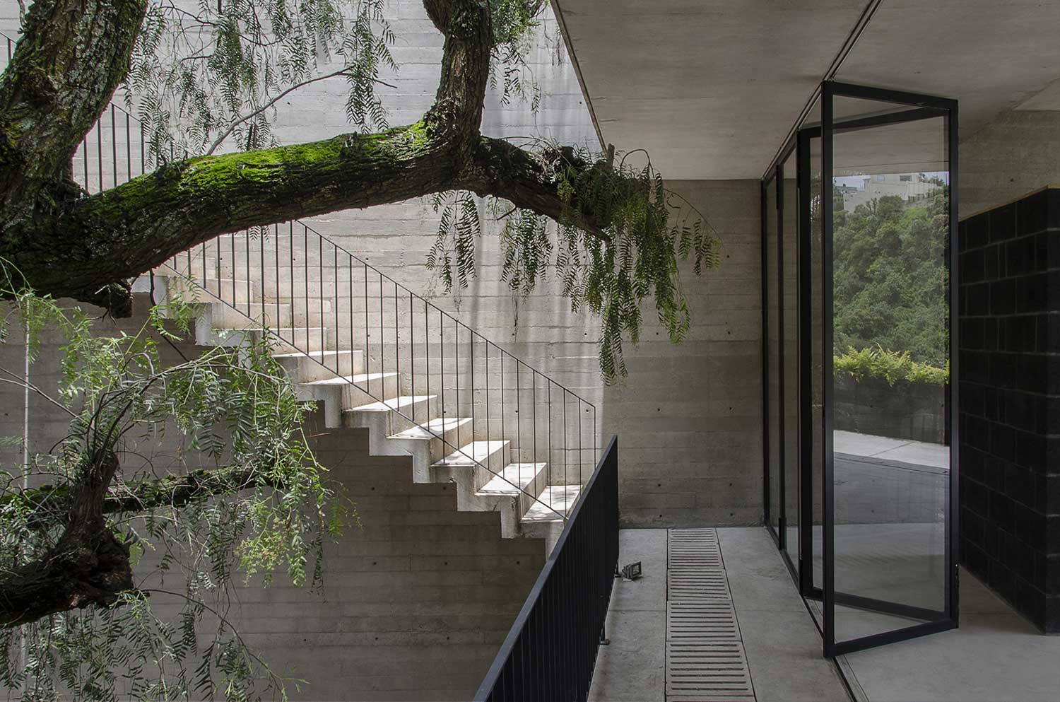 Concrete Compounds Courtyards : Concrete courtyard house mexico city by arch yellowtrace