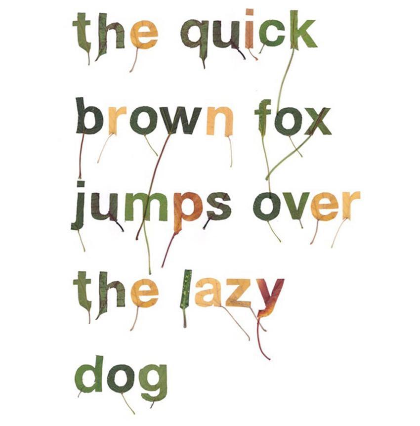 Cut Out Leaf Typography by Twan Van Keulen | Yellowtrace