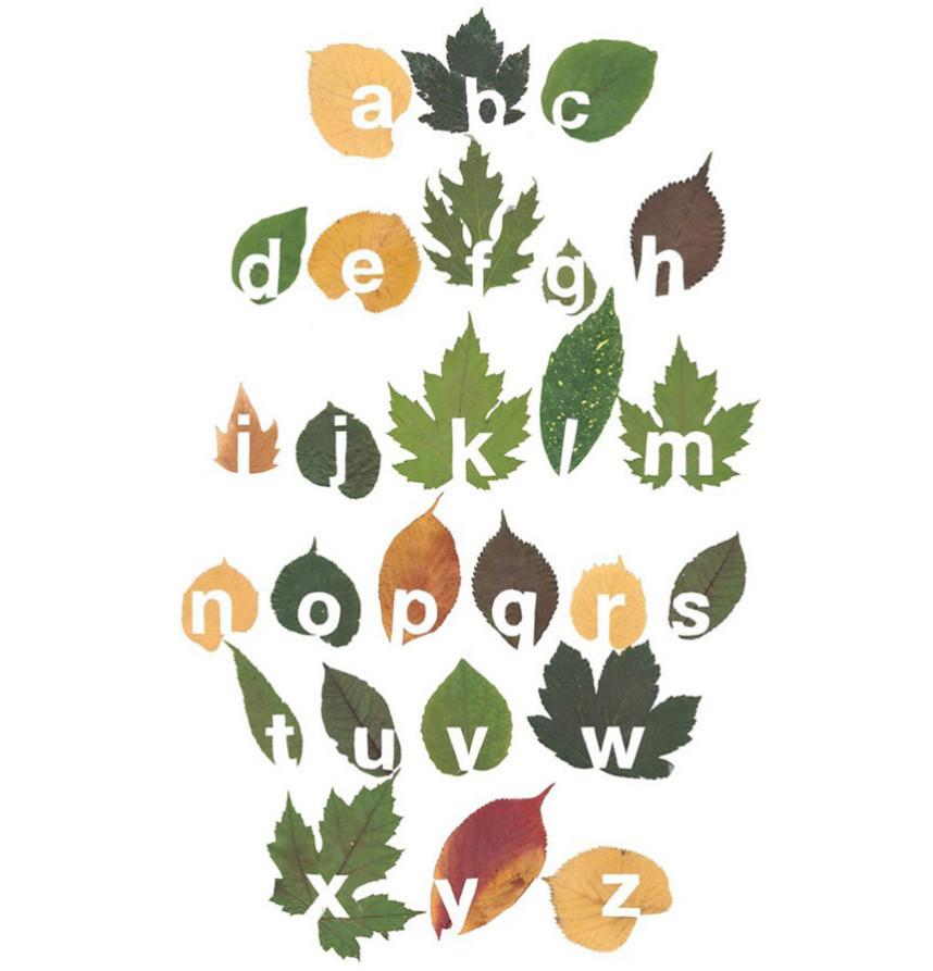 Cut Out Leaf Typography by Twan Van Keulen   Yellowtrace