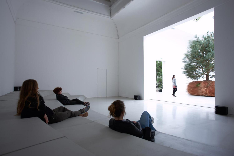 Celeste Boursier Mougenot Revolutions Kinetic Forest Venice Biennale 2015   Yellowtrace