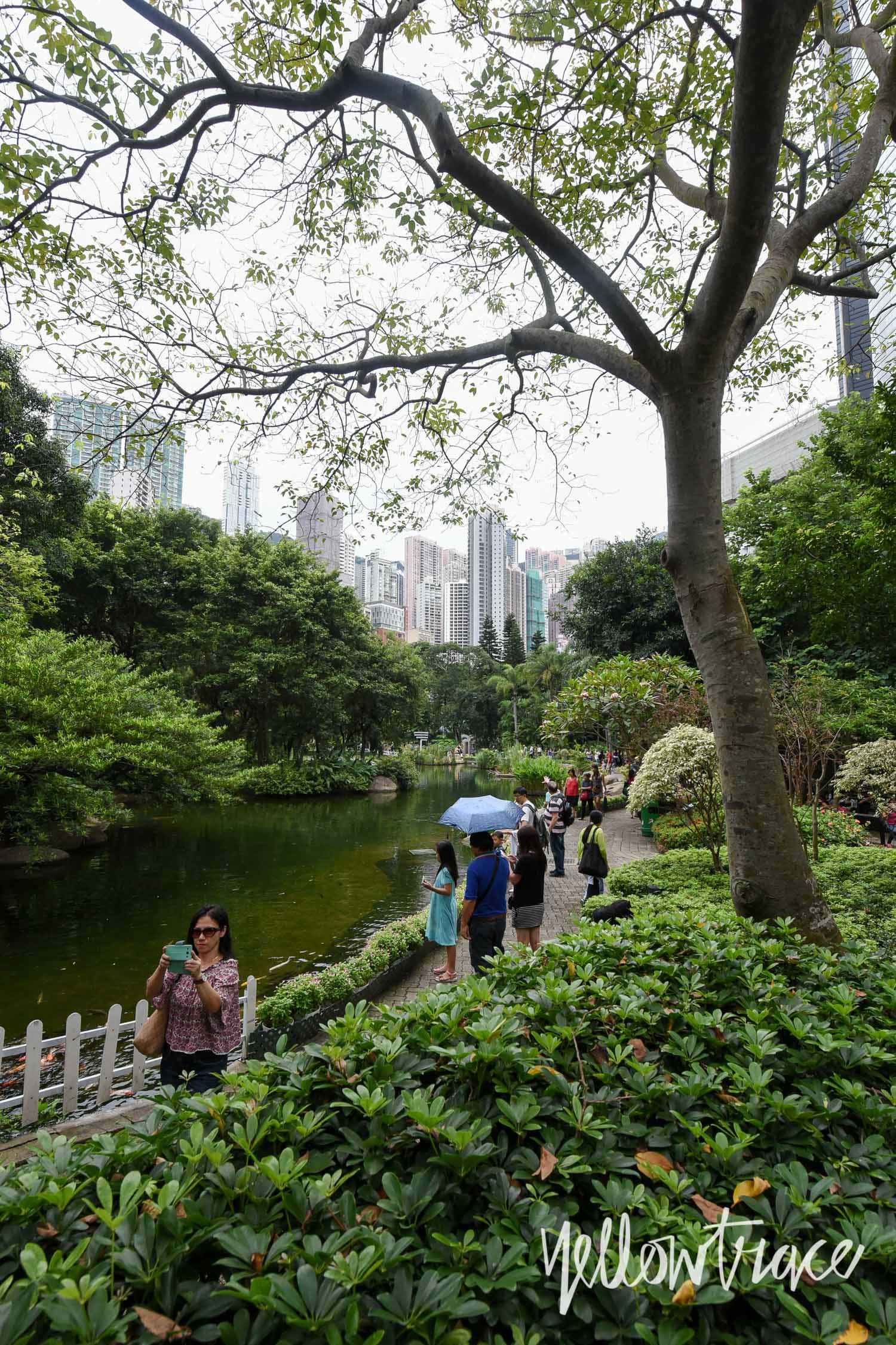 Hong Kong Park, Photo © Nick Hughes | Yellowtrace