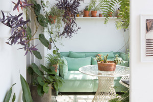 Greenterior: Plant-loving Creatives & Their Homes | Yellowtrace