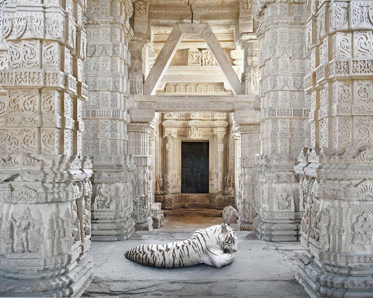 Karen Knorr Photos | Yellowtrace