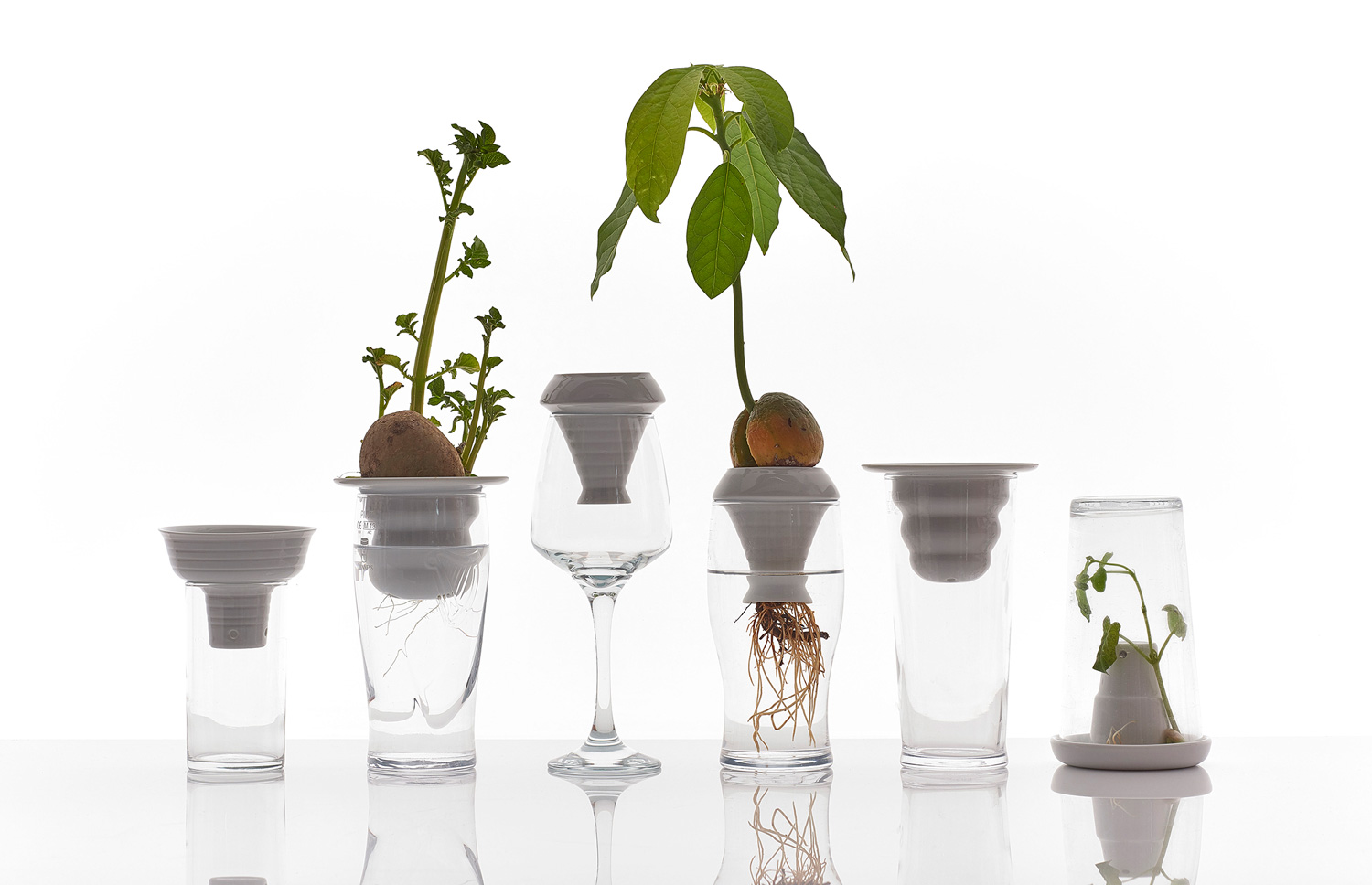#Milantrace2016 - Ventura Lambrate, Form and Seek - Plantation by Alicja Patanowska | Yellowtrace