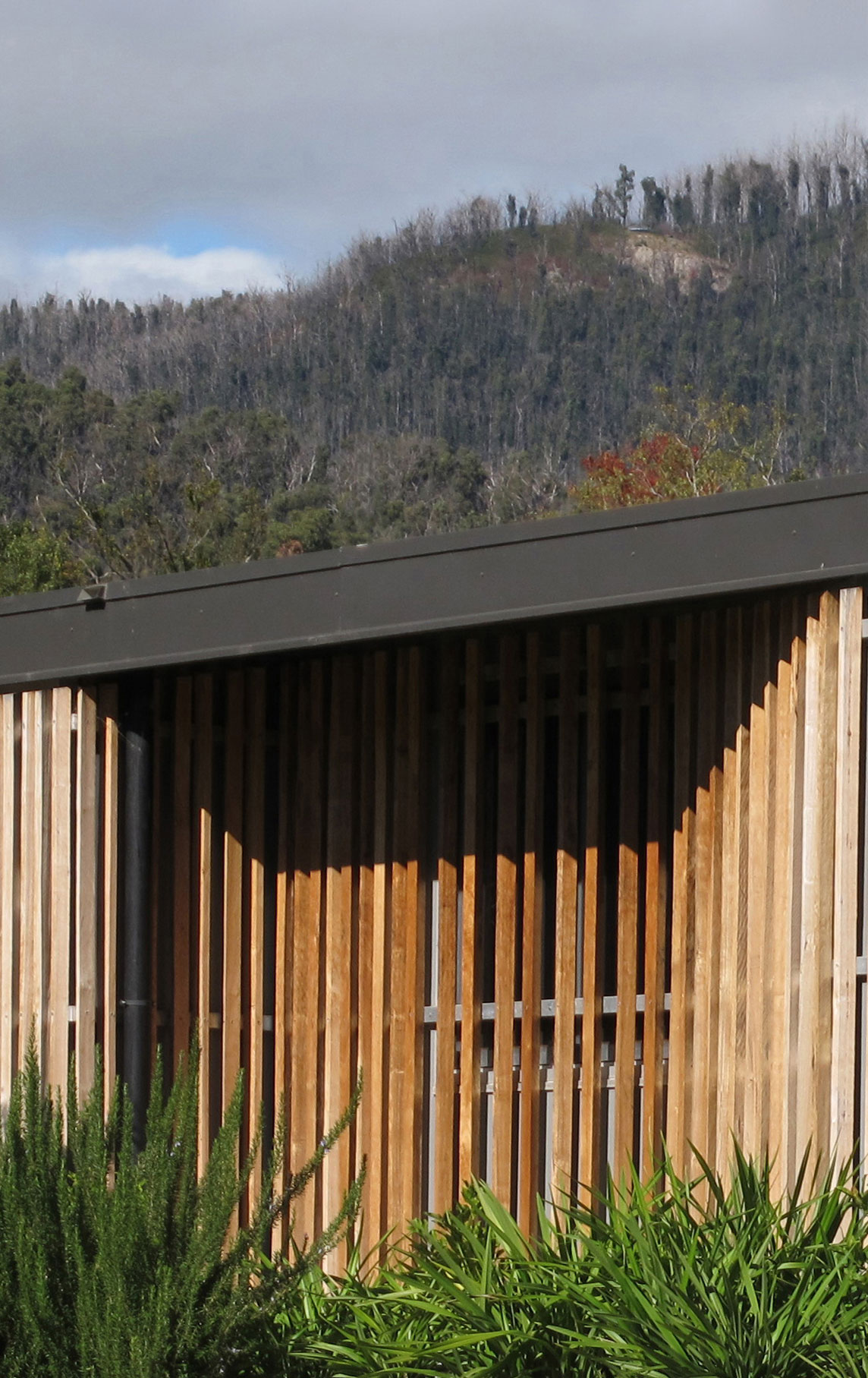 Interview: Melbourne-Based Architect Kerstin Thompson