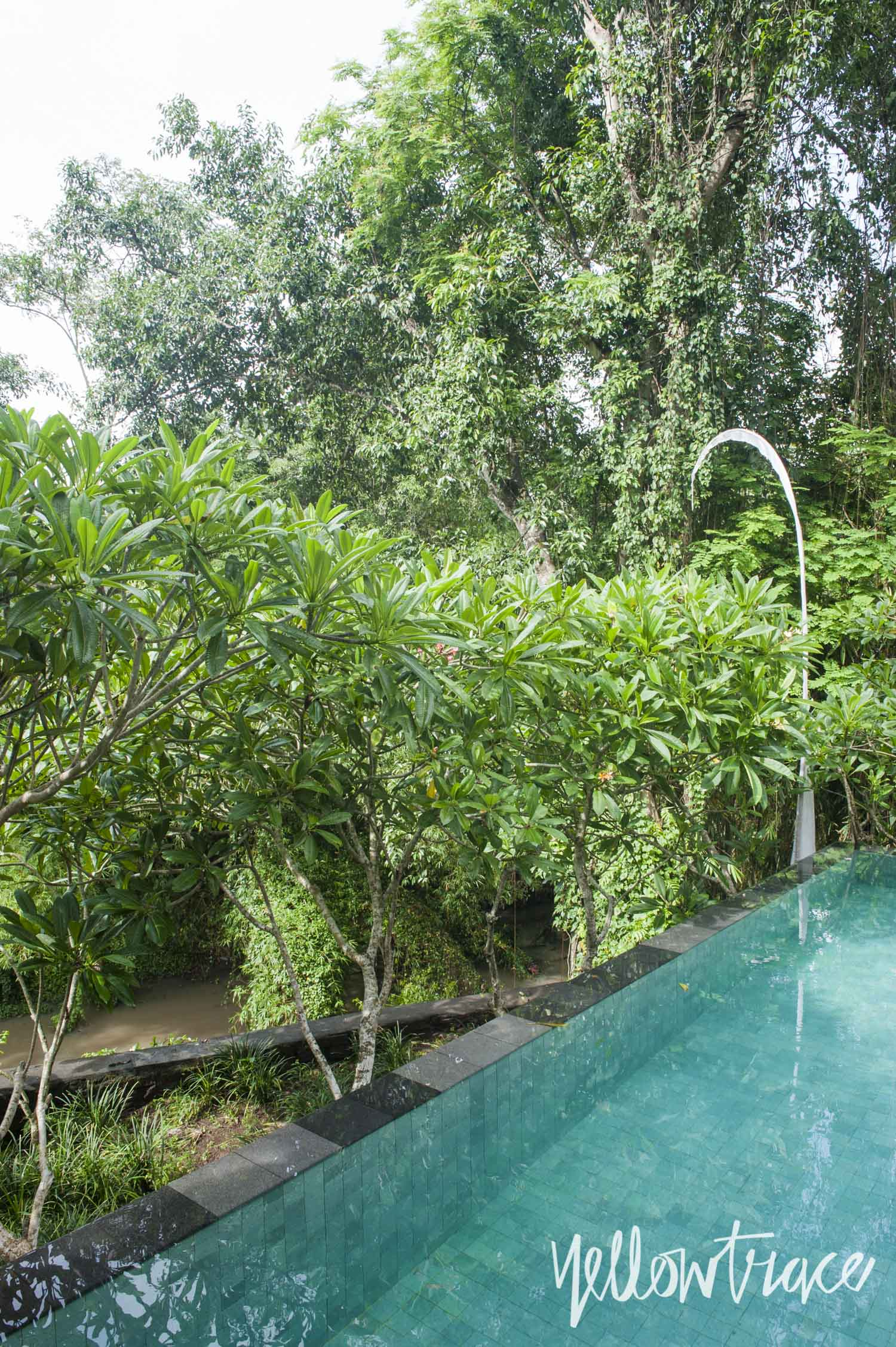 Villa Sungai Swimming Pool, Photo © Nick Hughes | Yellowtrace
