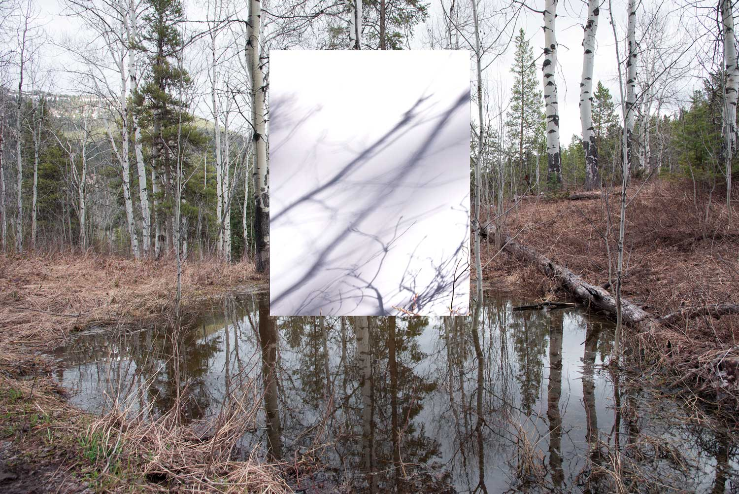 Transcriptions: A Conceptual Evaluation of the Landscape by American Photographer Kyra Schmidt | Yellowtrace