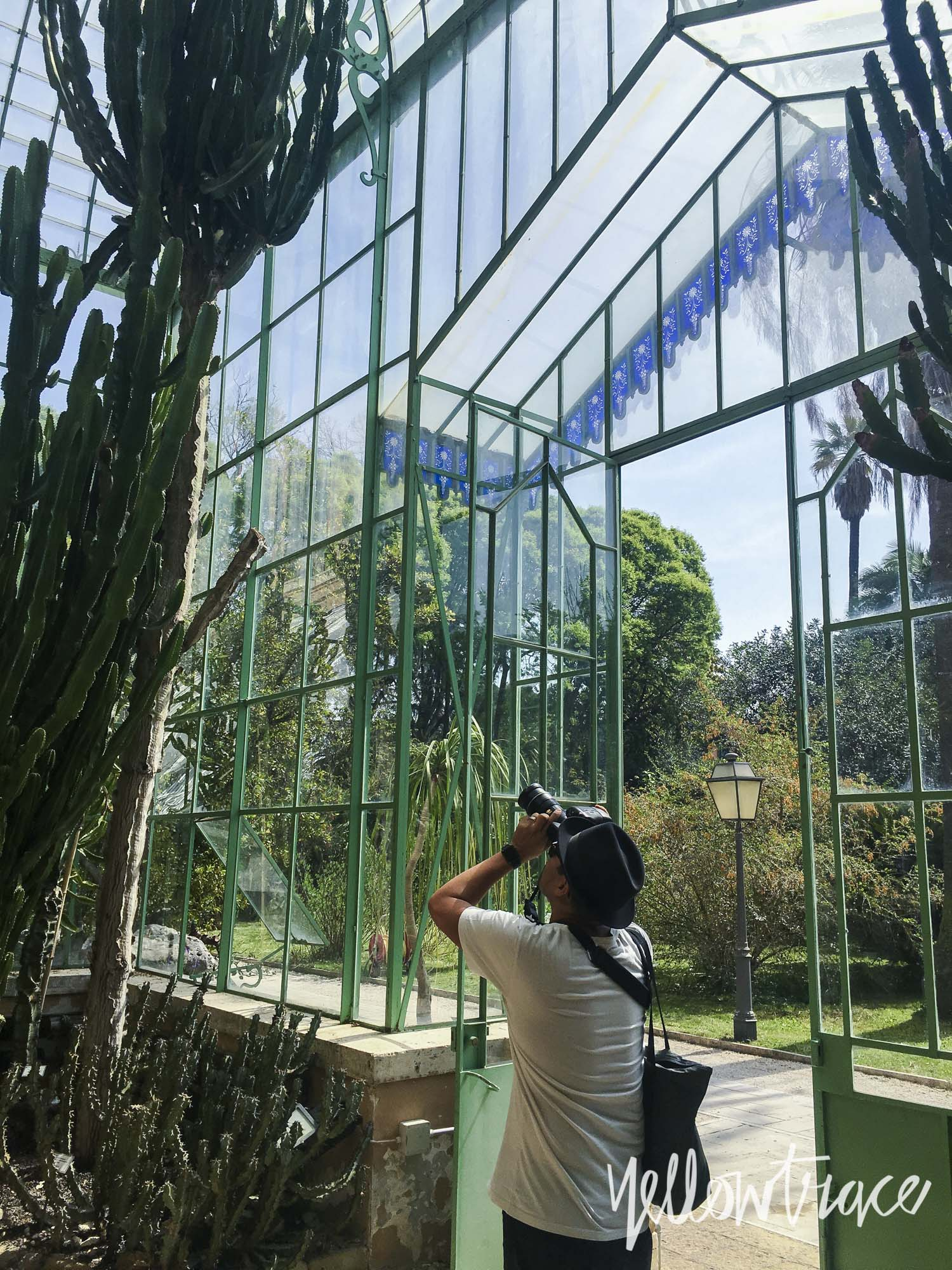 Orto Botanico di Roma (Botanical Gardens Rome), Photo © Dana Tomic Hughes | Yellowtrace