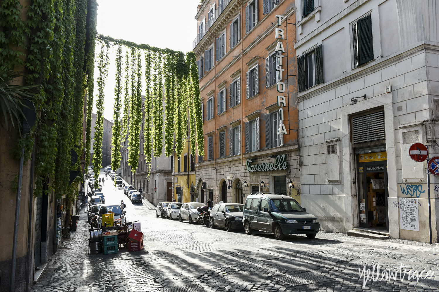 Monti Rome, Photo © Nick Hughes | Yellowtrace
