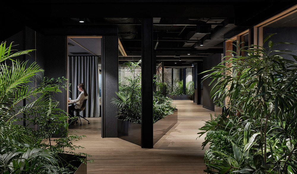slack office in melbourne by breathe architecture yellowtrace breathe architecture studio yellowtrace