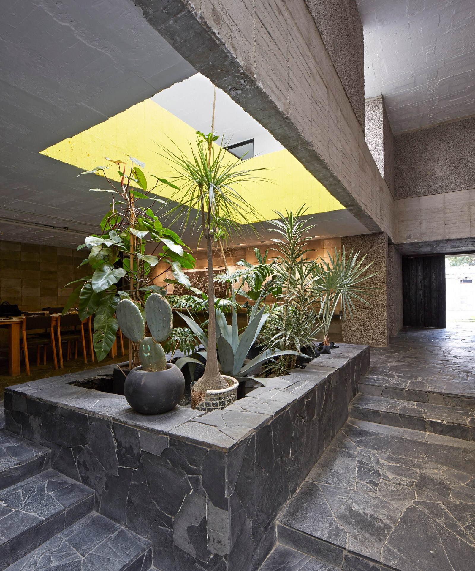 Brutalist Home & Studio of Mexican Sculptor Pedro Reyes & Carla Fernandez   Yellowtrace