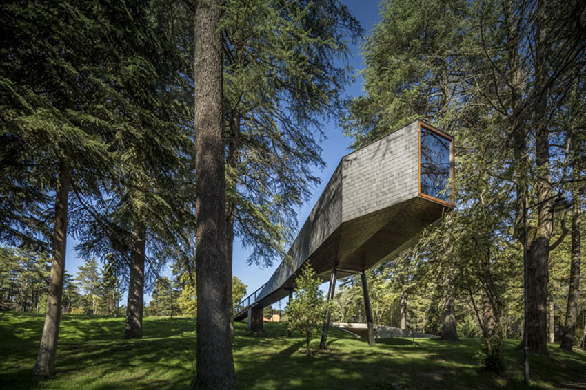Storiesondesignbyyellowtrace cunning cantilevers - Maison tree snake houses luis tiago rebelo andrade ...