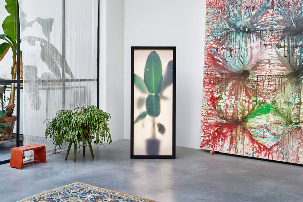 Growing Plants Indoor by Rem Atelier | Yellowtrace
