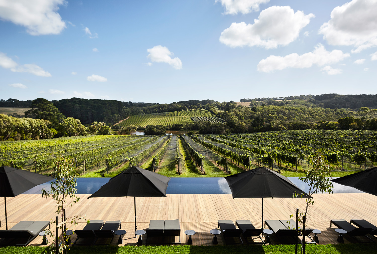 Jackalope Hotel In Mornington Peninsula By Carr Design Group