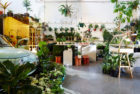 The Plant Society in Collingwood, Melbourne by Jason Chongue | Yellowtrace