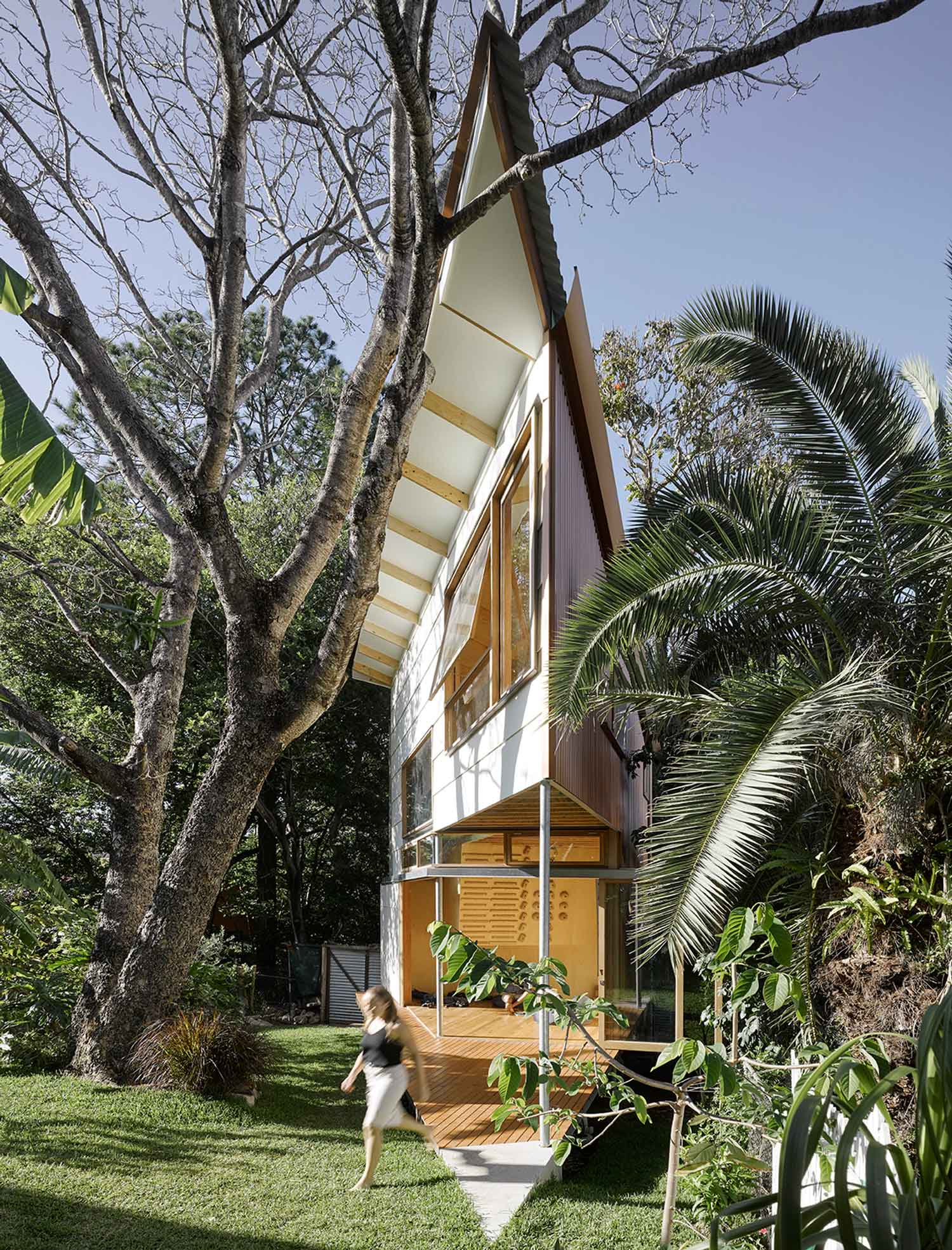 taringa treehouse in brisbane backyard by phorm architecture design