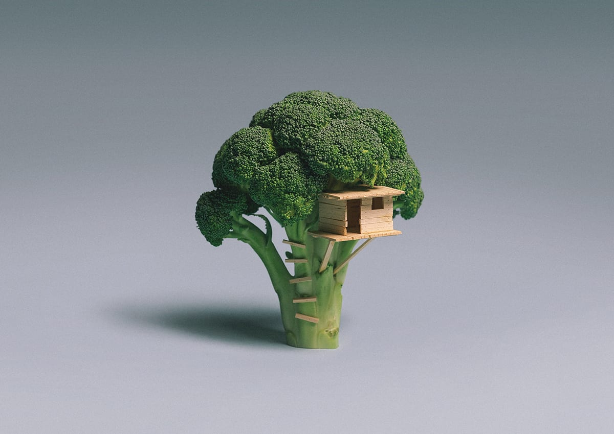 Broccoli House by Brock Davis | Yellowtrace