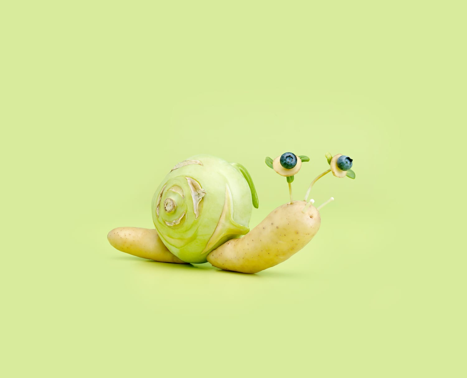 Escargots by Carl Kleiner | Yellowtrace