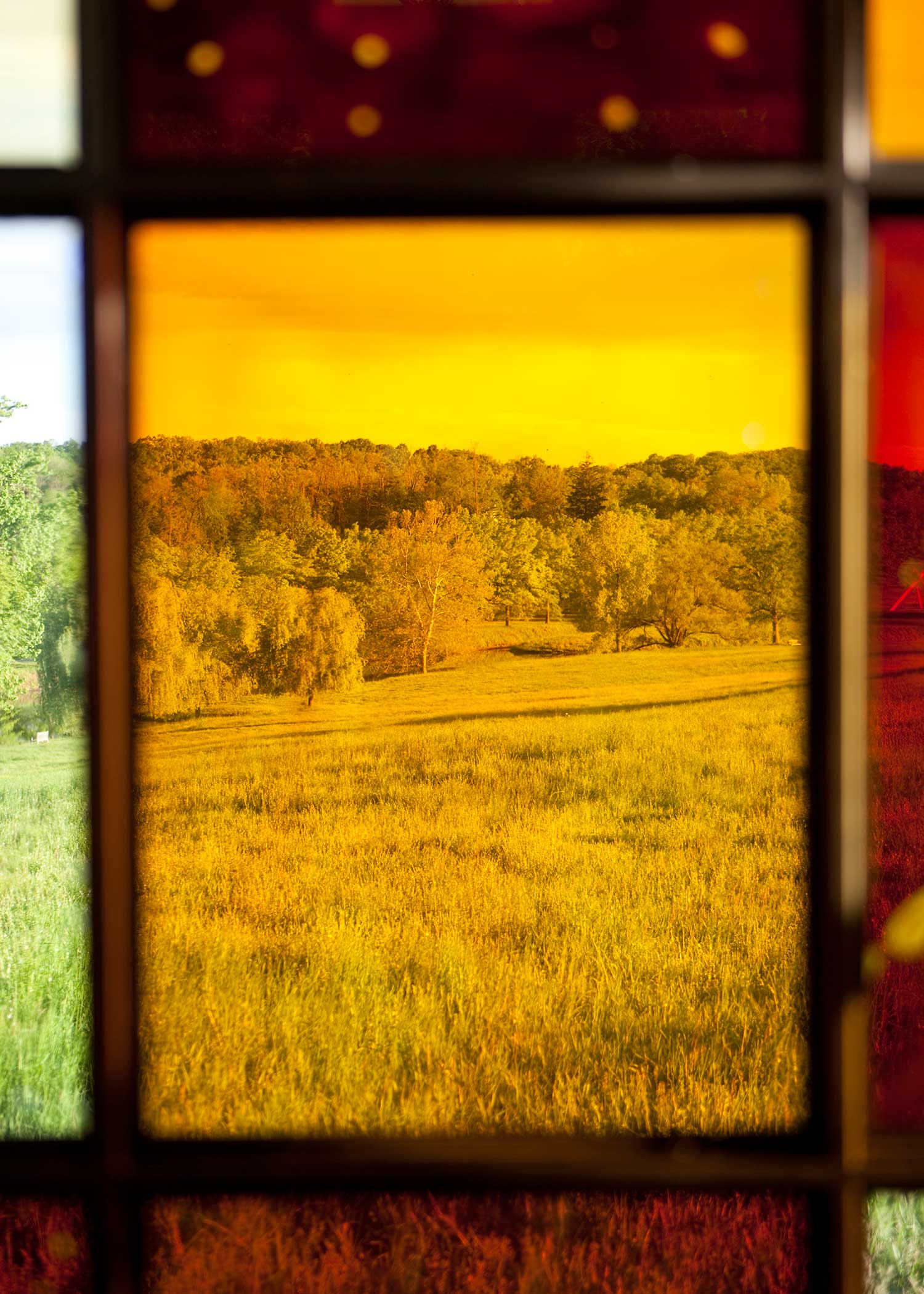 Solarium by William Lamson | Yellowtrace