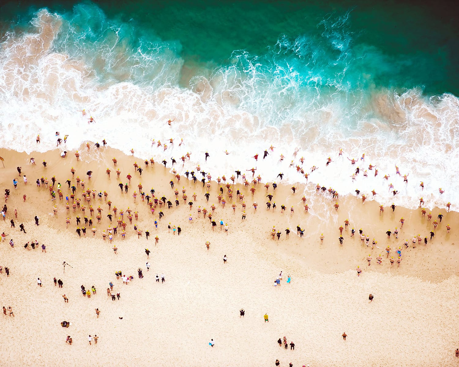 Bondi Beach by Tommy Clarke | Yellowtrace
