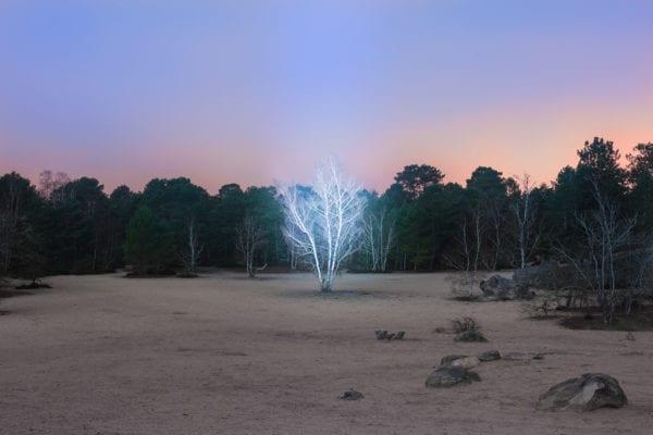 Alexis Pichot's Marche Celeste Photography Series   Yellowtrace