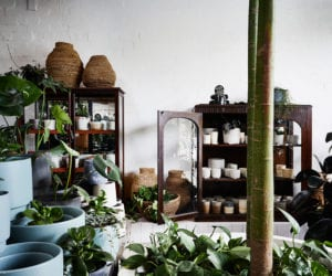 The Plant Society's New Flagship in Collingwood | Yellowtrace