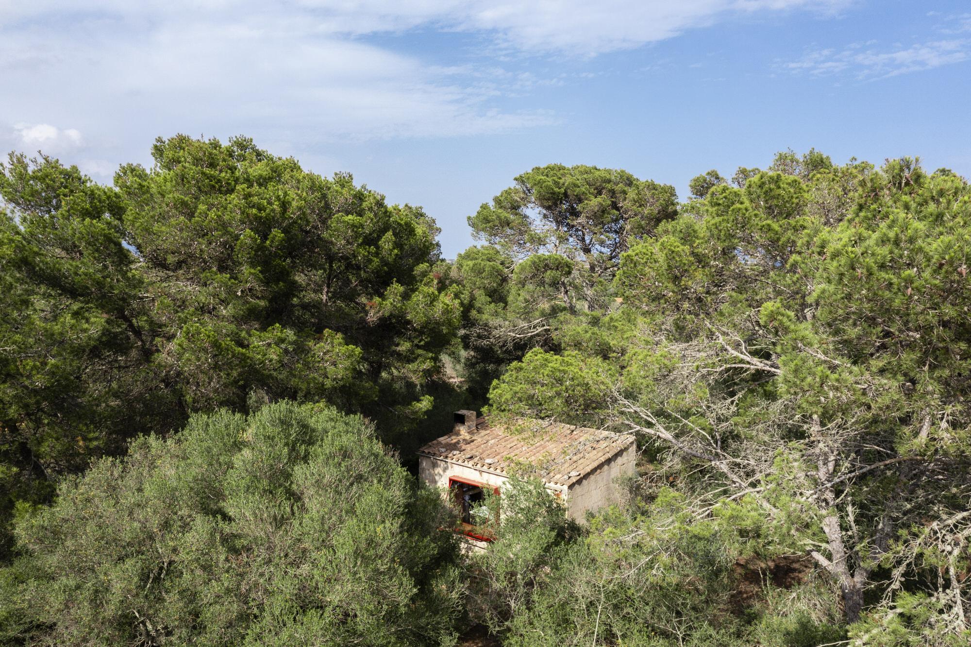 Mariana De Delas 12 Volt Retreat Palma De Mallorca Photo Tomeu Canyellas Yellowtrace 01